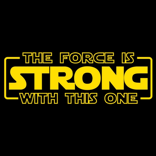 PS_0334_FORCE_STRONG_PIC2