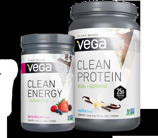 Vega-Clean-Group-No-Tagline